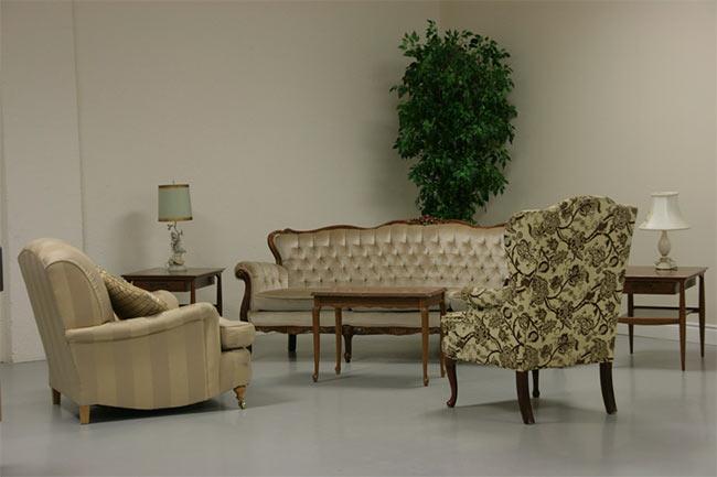 растения над диваном
